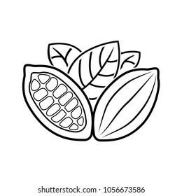 Cocoa beans, badge, logo, banner, for brochure, book. A contour drawing.