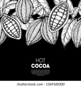Cocoa beans vector illustration. Cocoa pods sketch. Chocolate beans. Vintage design. Hand drawn illustration. Organic healthy food sketch. Can used for packaging design.