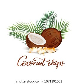 Coconut chips illustration. Good for food designs and labels