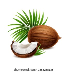 Coconut fresh whole and segment with white flesh closeup realistic composition with palm frond leaves vector illustration