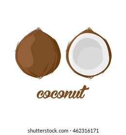 Coconut fruits poster in cartoon style. depicting whole and half. fresh juicy. isolated on white background including caption Coconut. Vector illustration.