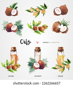 Coconut, jojoba and argan oil watercolor vector illustration. Skin care and hair treatment. Beauty and health concept design.