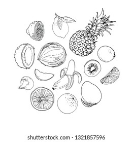 Coconut, pineapple, banana, lemon, kiwi, fig, mango, orange. Fruits drawn by a line on a white background. Fruits from Thailand. Food sketch lines.