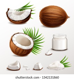 Coconut realistic set with nut segments  flesh pieces jar milk powder dry flakes palm leaves vector illustration