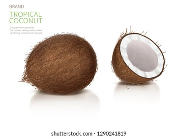 Coconut realistic vector illustration, whole and half broken coco nut with reflection, isolated on white background, and brand label. Set for packaging natural food and organic cosmetics.