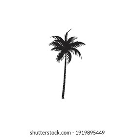 coconut tree icon, palm tree vector silhouette with black and white