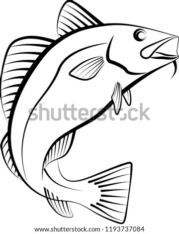Cod Fish Clip Art Illustration Stock Vector Royalty Free