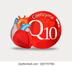 Coenzyme q10 and heart. Substance for maintaining cardiac activity. Basics of a healthy lifestyle.