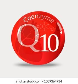 Coenzyme q10. A substance for maintaining cardiac activity. Basics of a healthy lifestyle.