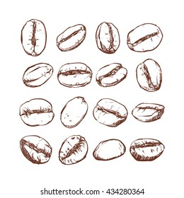 Coffee bean Isolated Hand drawn vector, sketch of coffee beans