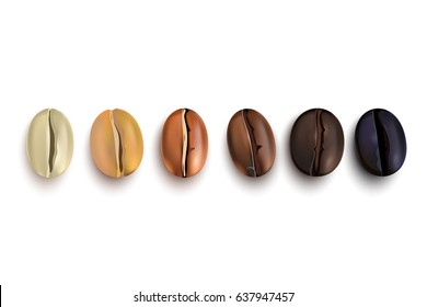 Coffee beans realistic set showing various stages of roasting isolated on white background vector illustration