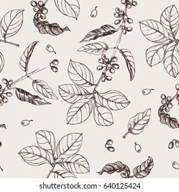 Coffee branches. Illustration of leaves and fruits of coffee in sketch style. Vintage background with leaves and coffee. seamless pattern.
