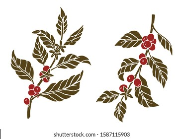Coffee Plant Flat Hand Drawing Illustration