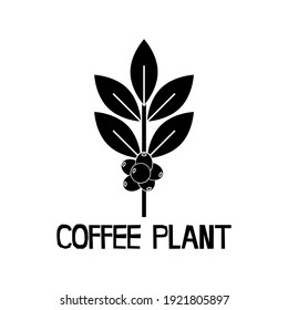 Coffee Plant Icon on White Background.