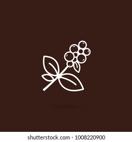 Coffee plant icon tree branch with berries with brown background. Coffee bean with leaf on white isolated background. Branch of coffee icon in line style design. Vector illustration