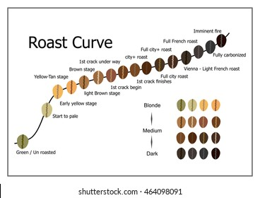 Coffee roast curve.
