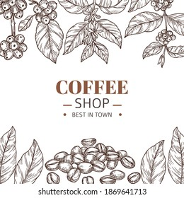 Coffee shop poster. Drawing leaves, hand drawn beans or roasted arabica grains. Cafe branding, vintage sketch plants frame vector template