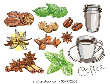 Coffee and spice hand drawing