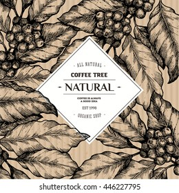 Coffee tree illustration. Engraved style illustration. Vintage coffee frame. Vector illustration