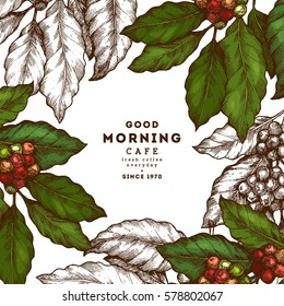 Coffee tree illustration. Engraved style illustration. Vintage coffee frame. Vector illustration