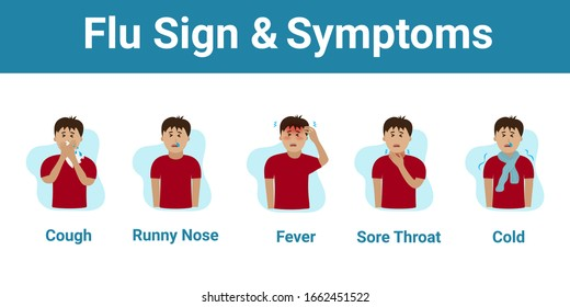 Cold and Flu Symptoms and Sign Infographic with Cartoon has Cough , Runny Nose , Fever , Sore Throat and Cold in Coronavirus or Covid-19 Outbreak. Illustration for Medical and Treatment