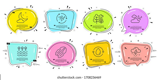 Cold-pressed oil, Tree and Pecan nut signs. Speech bubbles with quotes. Wind energy, Thunderstorm weather and Evaporation line icons set. Night weather symbol. Breeze power, Thunder bolt. Vector