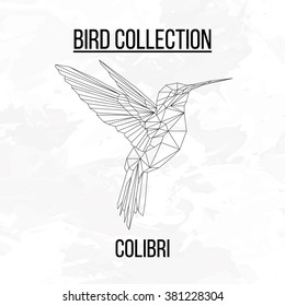 Colibri bird geometric lines silhouette isolated on white background vintage vector design element illustration