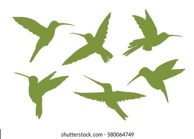colibri bird silhouette set