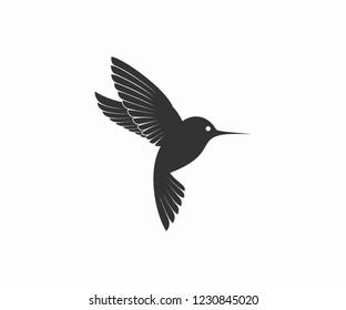 colibri logo designs