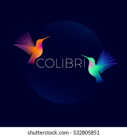 Colibri logo. Two colorful hummingbirds on dark  background.