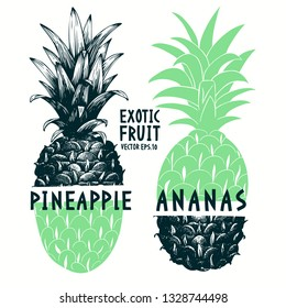 Collage hand drawn pineapple. Vector tropical summer fruit retro engraved style illustration.