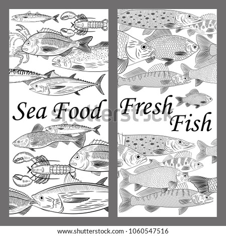 Collage On Topic Sea Food River Stock Vector Royalty Free