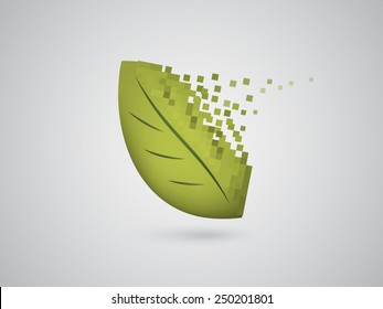 Collapsing Digital Leaf
