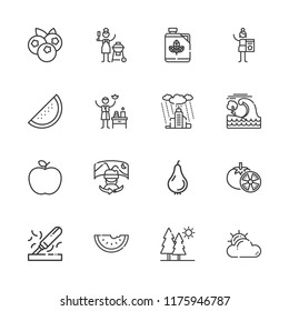 Collection of 16 natural outline icons include icons such as spa, biodiesel, field of view, watermelon, cloudy, apple, blueberries, charcoal, rain, tsunami, trees, wood, pear