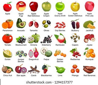 Collection of 35 Fruits icons - This set includes 35 icons of colorful fruits – Part 2