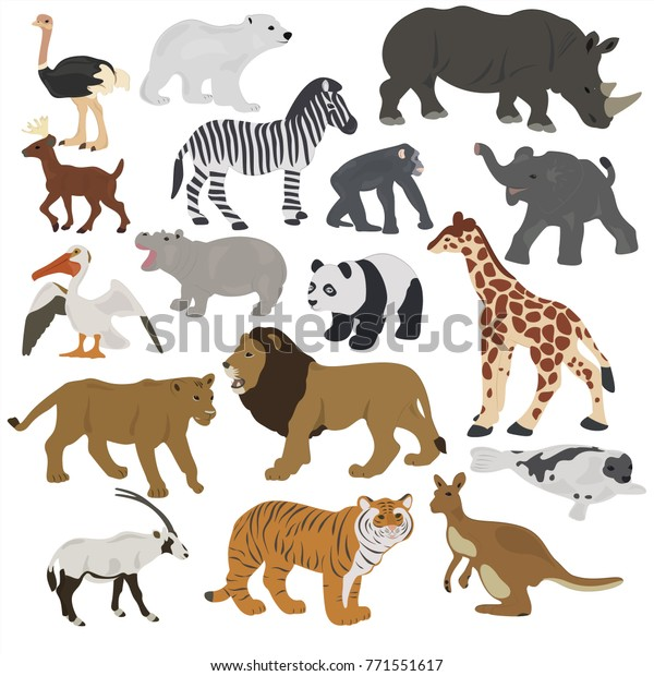 Collection African Animals On White Background Stock Vector ...