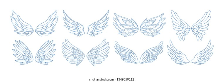 Collection of angel, bird or amour feather wings drawn with contour lines. Set of romantic decorative design elements isolated on white background. Elegant vector illustration for Valentine's day.