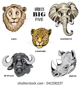Collection of animals from Africa's big five. Vector illustration on white background