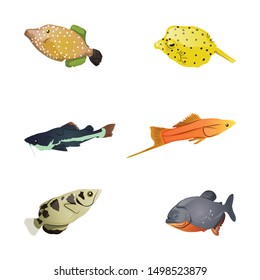 Collection Of Beautiful Colorful Fishes. Vector Illustration Isolated On White Background