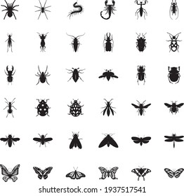 Collection of black insects isolated on a white background. Vector elements for your design.