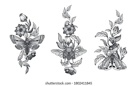 Collection of black and white moths and beetle, flowers, branches, isolated vector illustration. Mystical composiyion with insects. Hand drawn pictures for tattoo, coloring book.