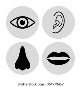 Collection of body parts - nose; eye; lips; ear  - vector icon