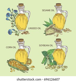 Collection of bottle with soybean oil,  flax oil  bottle with sesame oil and corn oil. Vector hand drawn illustration