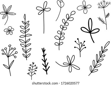 collection with branches, flowers and herbs with leaves. Black silhouettes isolated on white background. Set of hand drawn vector decorative elements for your design. Ink illustration.