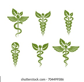 Collection of Caduceus illustrations composed with poisonous snakes and bird wings, healthcare conceptual vector illustrations. Alternative medicine theme.