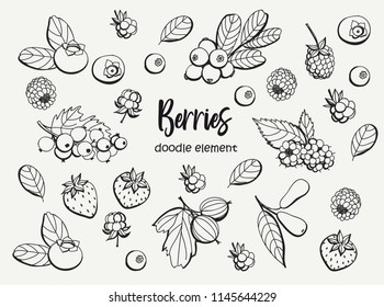 Collection of cartoon berries. Vector illustration. Set berry icons.Black outline. Isolated.Web icon hand drawn in doodle style.Design elements.