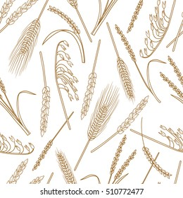 Collection of cereals, seamless pattern vector. Hand drawn icons set. White and brown background with sketch objects. Illustration with plants. Decorative wallpaper, good for printing