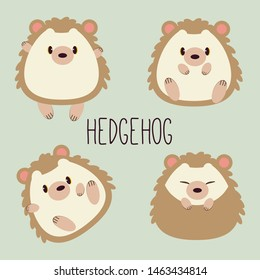 The collection for character cartoon of cute hedgehog with many action in flat vector. Graphic resource about hedgehog for graphic,content , banner, sticker label and greeting card.