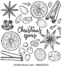 Collection of Christmas spices and citrus fruit. Black and white hand drawn graphic sketch vector illustration.