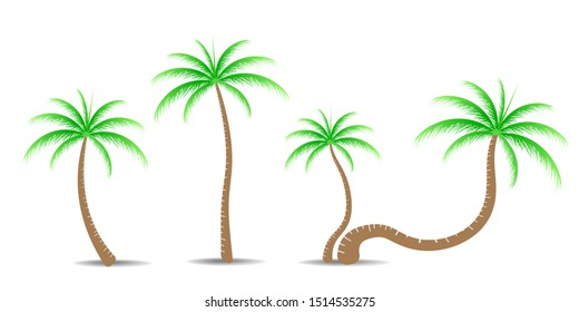 Collection of Coconut trees. Can be used to illustrate any nature or healthy lifestyle topic.